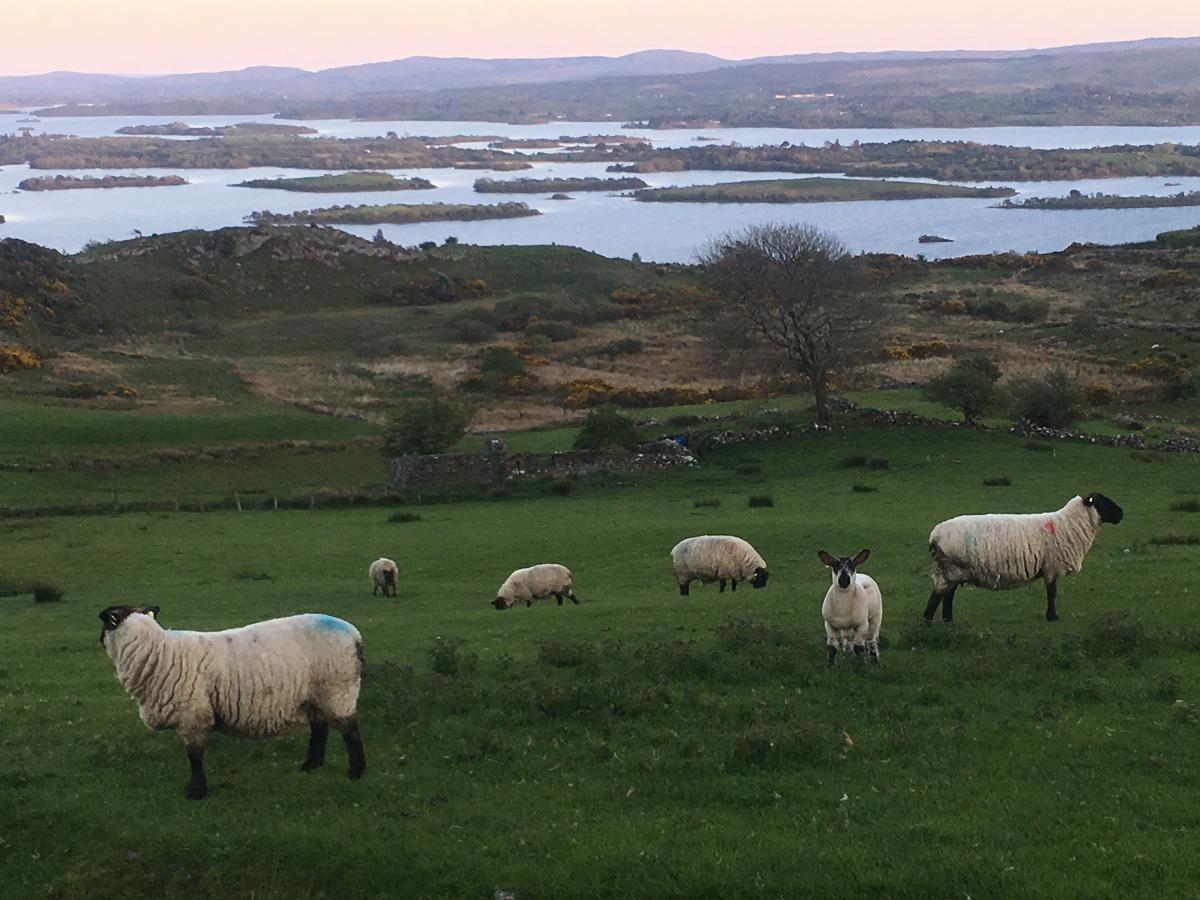 Binn Sléibhe, Co. Galway, Írország