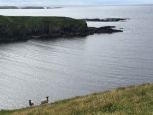Nyugat-Írország: Clare, Galway, Mayo megyék